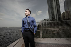 Businessman by the bay Royalty Free Stock Photography