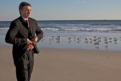 Businessman on the beach stock image