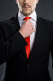 Businessman. Royalty Free Stock Image