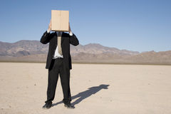 Businessman with a box Royalty Free Stock Images