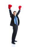 Businessman boxer Stock Photos