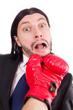 Businessman boxer isolated Stock Photos