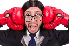 Businessman boxer isolated Stock Photo