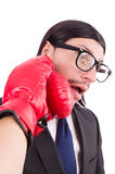 Businessman boxer Royalty Free Stock Images