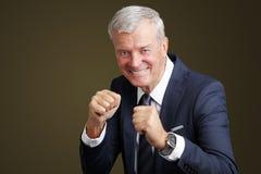 Businessman boxing Stock Photos