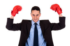 Businessman boxing gloves Stock Photography