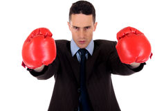 Businessman boxing gloves Stock Image