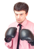 Businessman with boxing gloves. Stock Image