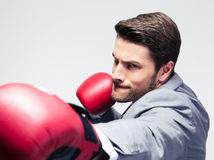 Businessman in boxing gloves hitting at camera Stock Image