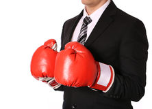 Businessman with boxing gloves isolated Stock Images