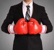Businessman with boxing gloves Royalty Free Stock Image