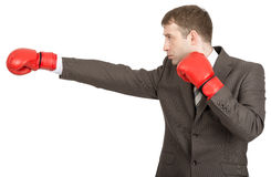 Businessman in boxing gloves Royalty Free Stock Photography