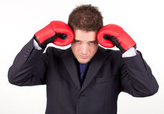 Businessman with boxing gloves to his head Royalty Free Stock Photography