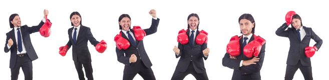 The businessman with boxing gloves on white Royalty Free Stock Image