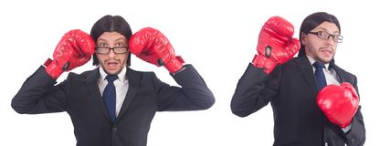 The businessman with boxing gloves on white Royalty Free Stock Photo