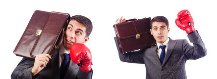 The businessman with boxing gloves on white Royalty Free Stock Photography