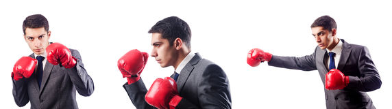 The businessman with boxing gloves on white Stock Image