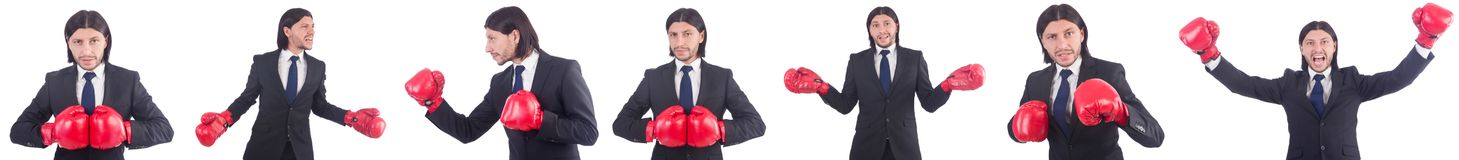 The businessman with boxing gloves on white Stock Photos