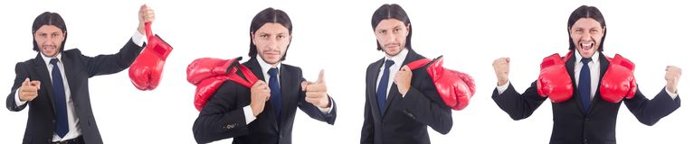 The businessman with boxing gloves on white Stock Images