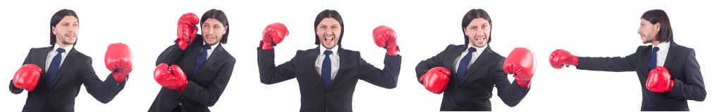 The businessman with boxing gloves on white Royalty Free Stock Photos