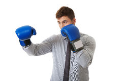 Businessman with boxing gloves. Stock Photo