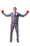 The businessman boxing isolated on the white background Royalty Free Stock Images