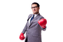 The businessman boxing isolated on the white background Royalty Free Stock Photo