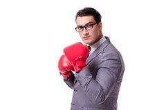 The businessman boxing isolated on the white background Stock Photography