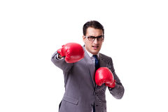 The businessman boxing isolated on the white background Royalty Free Stock Image