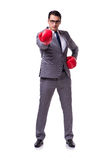 The businessman boxing isolated on the white background Stock Image