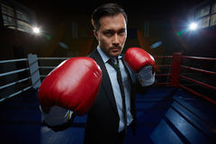 Businessman on boxing rink Stock Image
