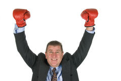 Businessman boxing victory Royalty Free Stock Image
