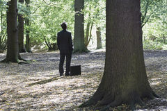 Businessman With Briefcase Standing In Forest Stock Image