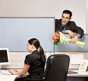 Businessman bringing co-worker flowers Stock Images