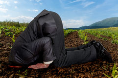 Businessman burying his head in the ground royalty free stock images