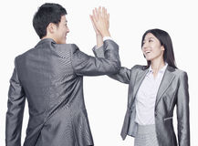 Businessman and businesswoman giving a high five, studio shot Stock Image