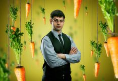 Businessman and carrots Stock Images