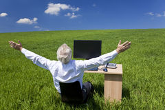 Businessman Celebrating Desk In Green Field Stock Photography