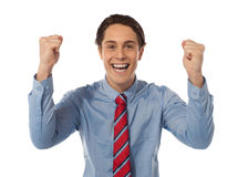 Businessman celebrating success with arms raised Stock Photos