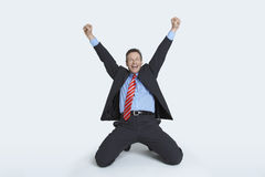 Businessman Celebrating Victory Royalty Free Stock Image