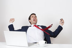 Businessman cheering Royalty Free Stock Images