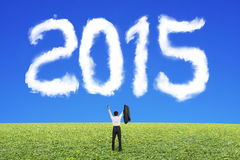 Businessman cheering for 2015 cloud shape with blue sky grass Stock Images