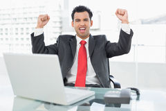 Businessman cheering in front of laptop at office desk Stock Photos