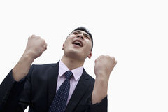Businessman Cheering, Studio Shot Royalty Free Stock Photos