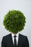 Businessman with a circular bush obscuring his face, studio shot Stock Photos