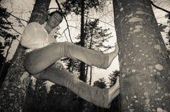 Businessman climbing on a tree Stock Photos