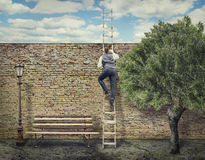 Businessman Climbing up the Ladder Royalty Free Stock Image