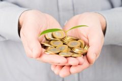 Businessman with coin money and plant. Stock Photo