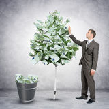 Businessman collecting money from tree Stock Image