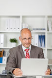 Businessman concentrated on his laptop Stock Image
